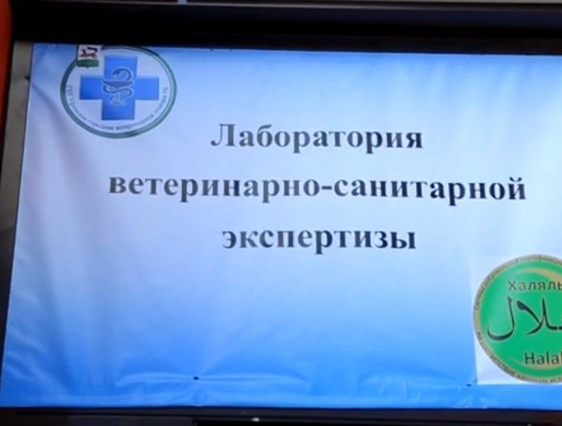 Ю-ТВ открытие лаборатории